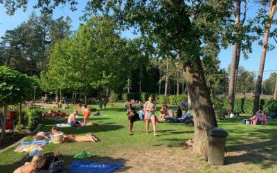 Zwembad In de Dennen zoekt 'groene vingers'